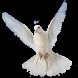 Puterea Duhului Sfânt ȋn fiecare creștin