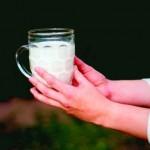 Un pahar de lapte (plătit în întregime)