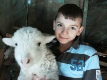 Ajută o familie cu 13 copii să aibă un cal şi o vacă