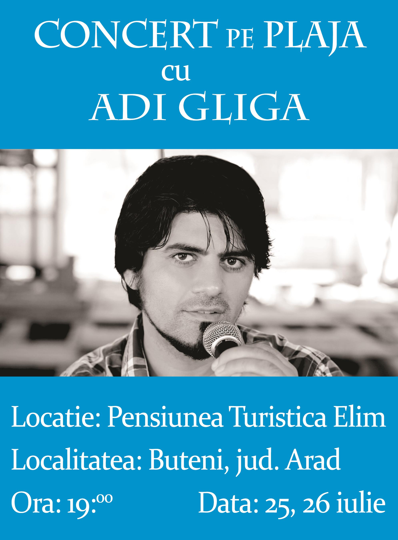 Concert pe plajă cu Adi Gliga la Buteni