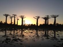 Veşti de la misionarii români din Madagascar
