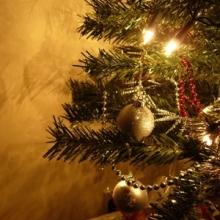Pregătiri, sărbătoare şi bucurie