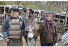 O familie de bătrȃni care locuiau într-o colibă a primit o locuinţă nouă (Sebiş, jud. Arad)